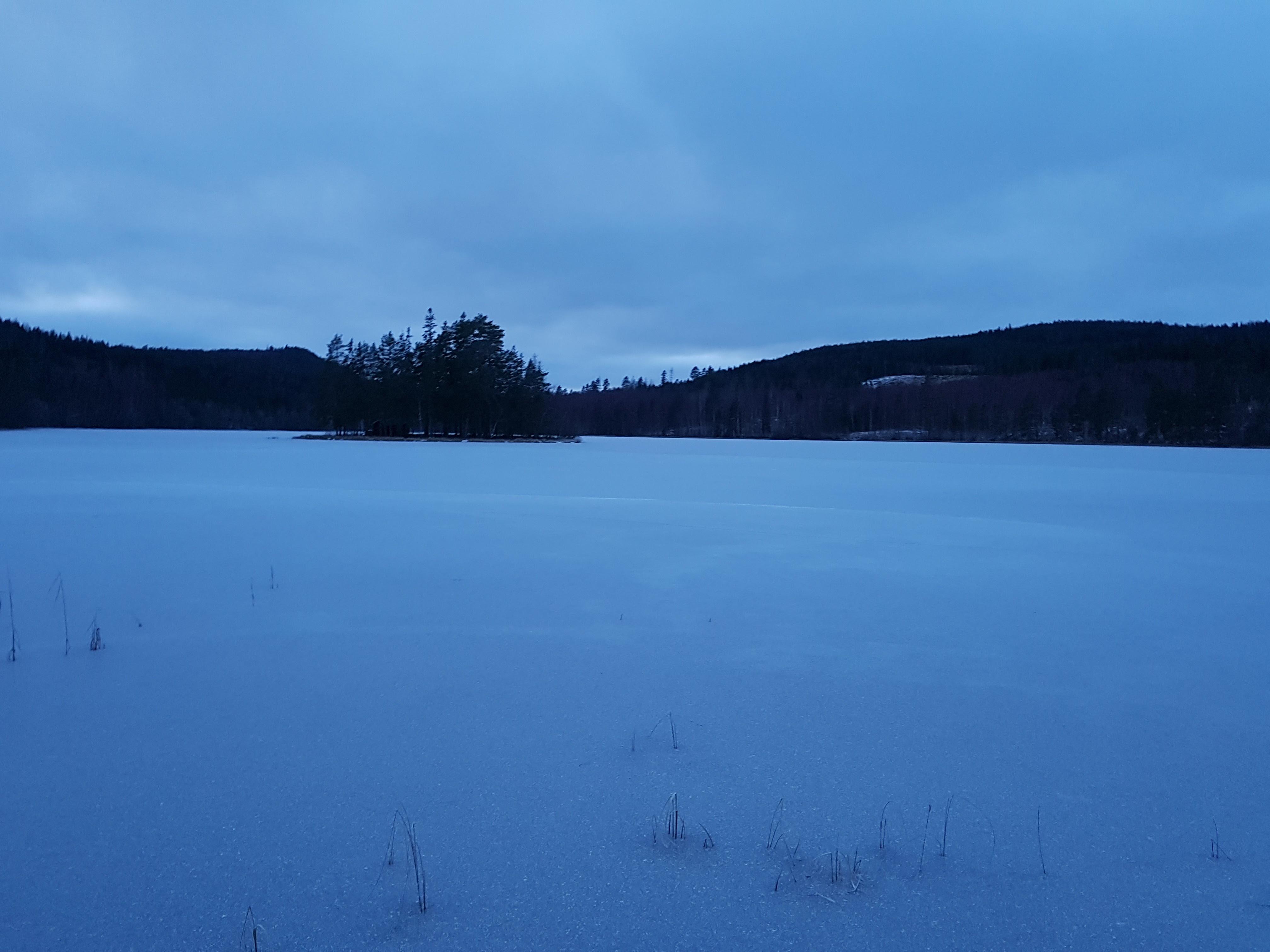Ön i Björktjärn, lätt att nå vintertid men inte lika lätt sommartid...;)